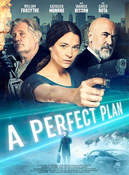 Perfect Plan; A