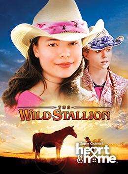 Wild Stallion; The