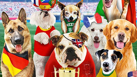 Pups United Premieres Aug 18 4:30PM   Only on Super Channel