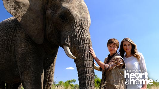An Elephant's Journey Premieres Jan 05 8:00PM | Only on Super Channel